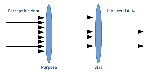 Perceivable data is filtered by purpose and by bias