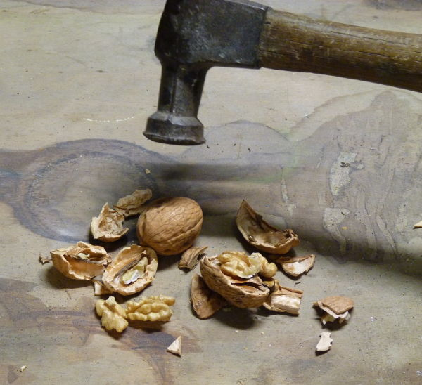 hammer used to crack walnuts